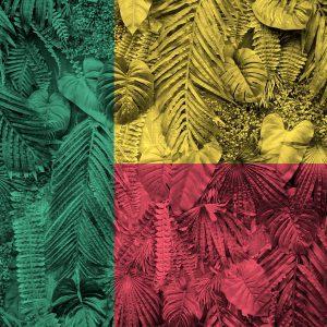 Benin: położenie, historia, najważniejsze informacje 15 - Twój Głos 📢 e-TG.pl