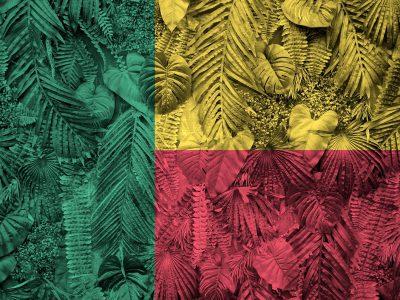 Benin: położenie, historia, najważniejsze informacje 7 - Twój Głos 📢 e-TG.pl
