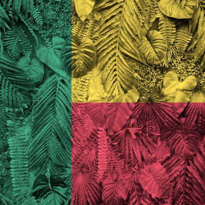 Benin: położenie, historia, najważniejsze informacje 5 - Twój Głos 📢 e-TG.pl