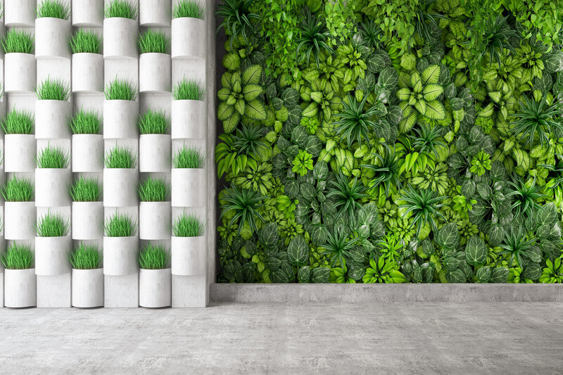 Zielona ściana - w jaki sposób o nią dbać, aby cieszyła nasze oko 1 - Twój Głos - e-TG.pl
